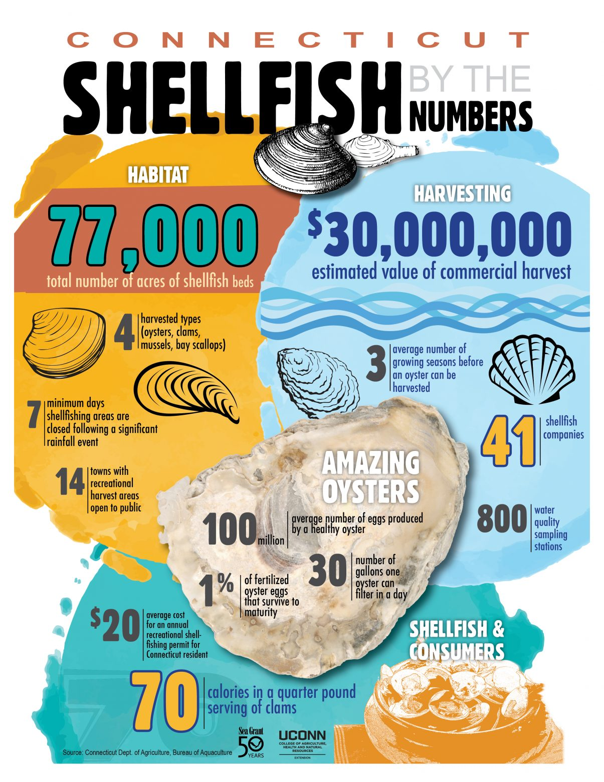 shellfish by numbers
