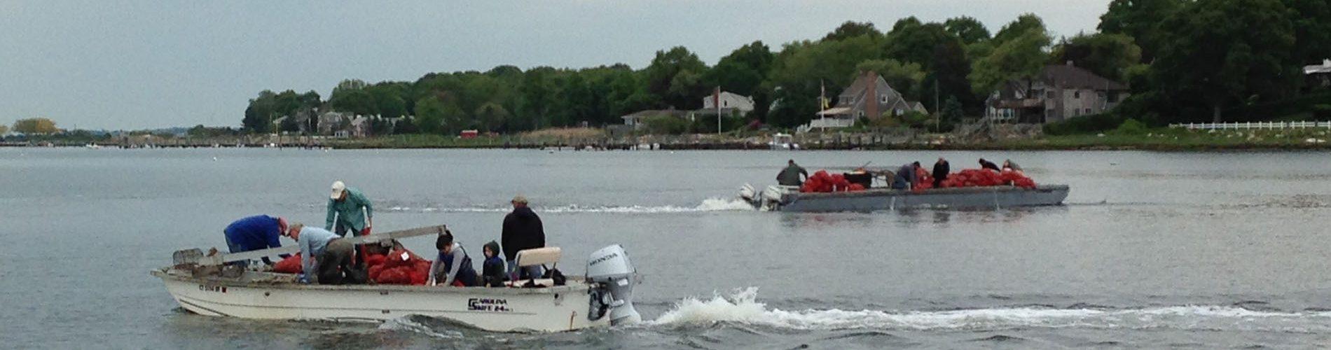 Boats seeding